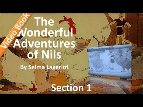 The Wonderful Adventures of Nils by Selma Lagerlöf - 01 - The Boy