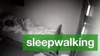 Sleepwalking 101
