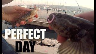 La Pescata PERFETTA a Light Rock Fishing: Scorfano, Tordo e Tanti Ghiozzi GIGANTI!