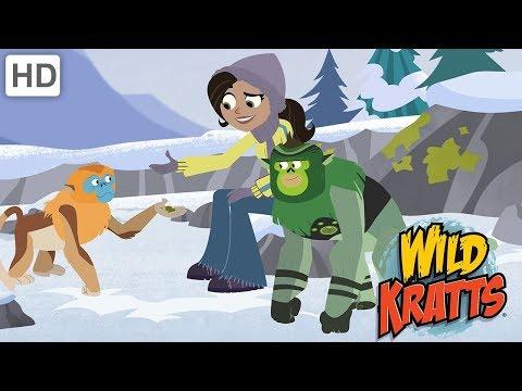 Wild Kratts  Wild Holiday Adventures