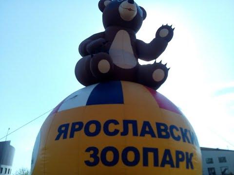 Ярославль. Обалденный ЗООПАРК! ч.1#поездкавярославль#ярославль#зоопарк
