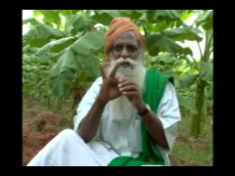 Vergal - Natural farming - Nammalvar