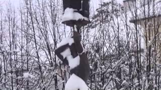 Prava zima ©Marko Čuljat www.locke-novine.hr Lička televizija Gospić LTVG Lika press