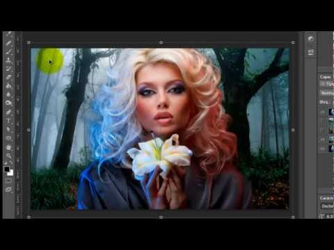 ... imagen con fondo transparente - Tutorial de Photoshop | FunnyCat.TV