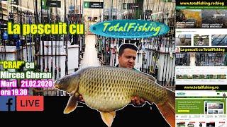 Pescuit la crap - Boilies si nada
