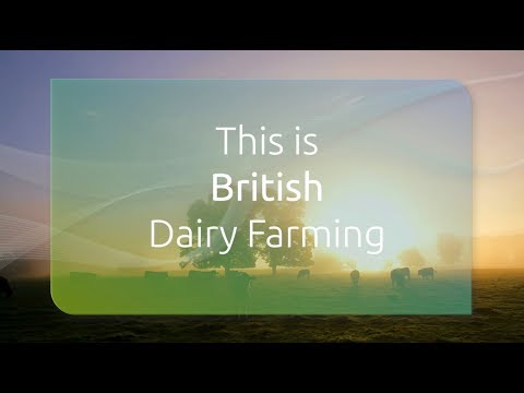 This is British Dairy Farming