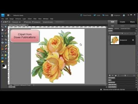 photoshop-elements:-make-a-floral-pattern-from-clipart