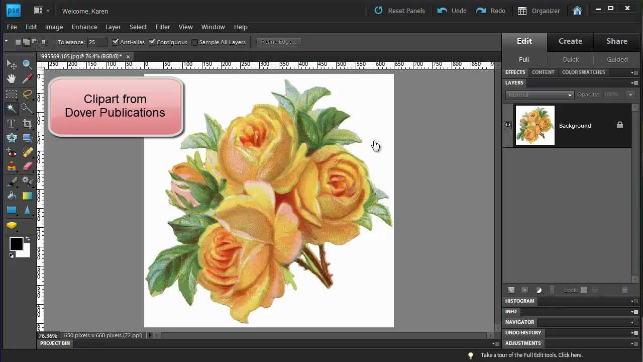 Photoshop Elements: Make a Floral Pattern from Clipart