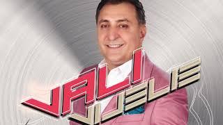 Vali Vijelie - Baiatul meu (Originala 2019)