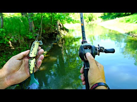 Bass Fishing a TINY Creek w/ GIANT Lures!!!