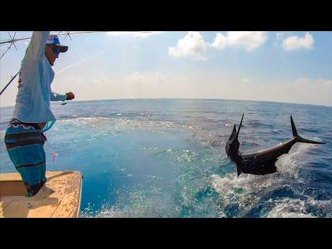 Most EPIC Sailfish Video Ever! GIANT Pacific Sailfish (Quepos, Costa Rica)