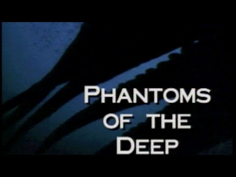 Phantoms of the Deep