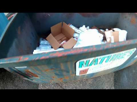 """Dumpster diving on a Wednesday in """"plastic city"""""""