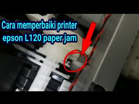 Epson L120 Printer Paper Feed Problem