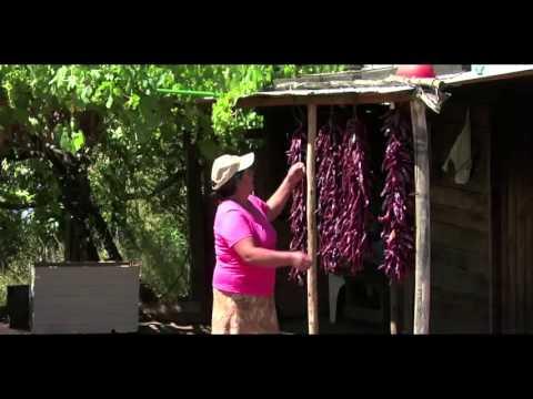 Video Oficial Del Ministerio De Agricultura De Chile 2013 - Versión Español
