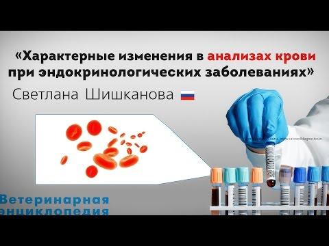 Анализы крови при эндокринологических заболеваниях. Характерные изменения