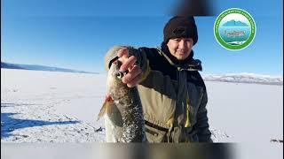 Озеро Маркаколь 2020 год