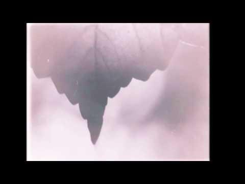 Maarja Nuut & Ruum - Kuud kuulama