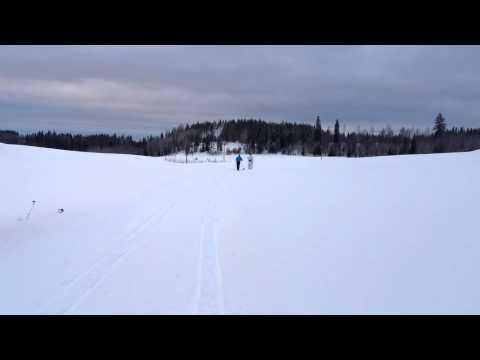 Välipäivien Luontoliikuntaa Lammilla - Tietokone.m4v
