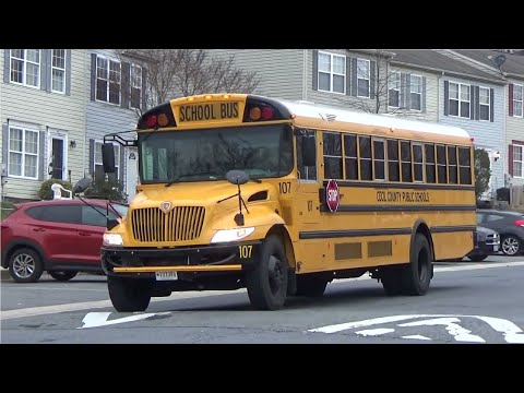 Top 10 School Buses
