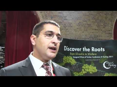 Wines Of Turkey UK Launch 2011, Vinopolis, London