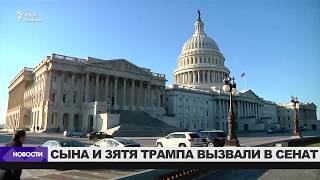 Намечены слушания в Сенате по делу о связях Трампа с Россией / Новости