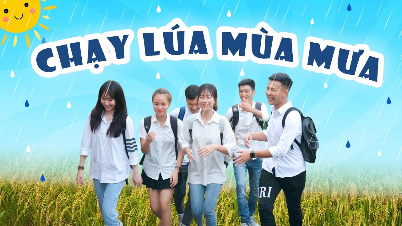 Download CHẠY LÚA MÙA MƯA | Hai Anh Em Phần 231 | Phim Ngắn Hài Hước Hay Nhất Gãy TV