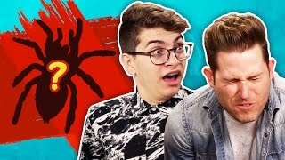 EATING REAL SPIDERS W/ JOSHUADTV