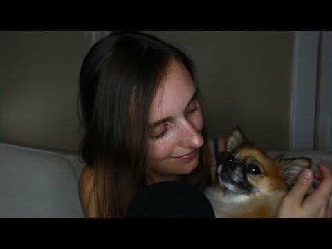 Sleepy ASMR ♥ Get Cozy With Me, My Doggo & Plush Collection