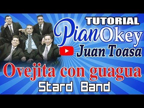 Mi Ovejita con Guagua - Star Band + tutorial piano = PianOkey