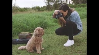 Learn to take better photos with Canon EOS 800D Guided Display