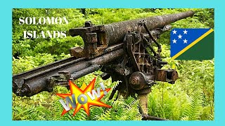 WW2 Japanese guns in the forests of the SOLOMON ISLANDS (New Georgia Island, Western Province)