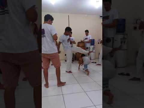 João Vitor na roda de capoeira