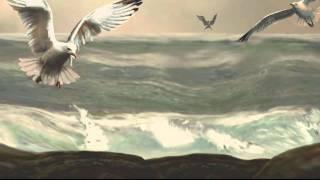Antonio Lucio Vivaldi - Storm