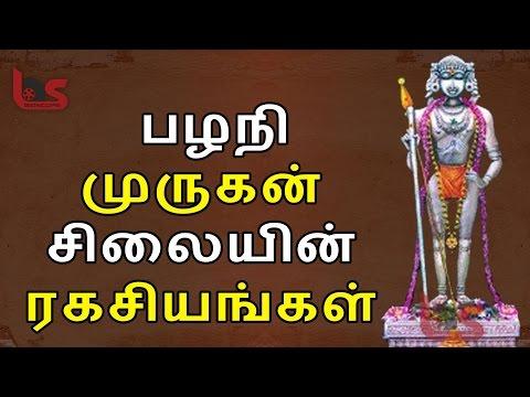 மிரளவைக்கும் பழநி நவபாசான சிலை ரகசியம் | Palani Navapasan silai | BioScope