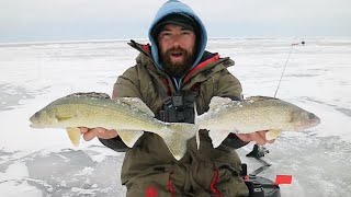 Early Ice Red Lake Walleyes HARVEST