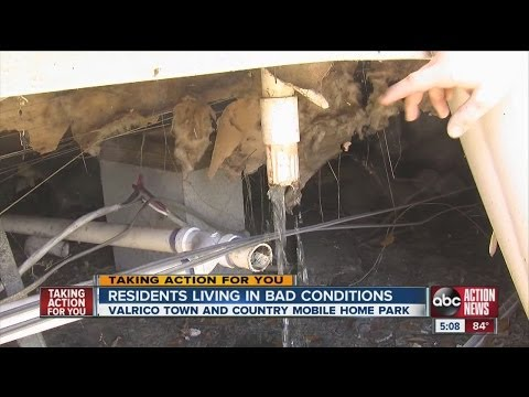 TAFY: raw sewage at valrico mobile home park