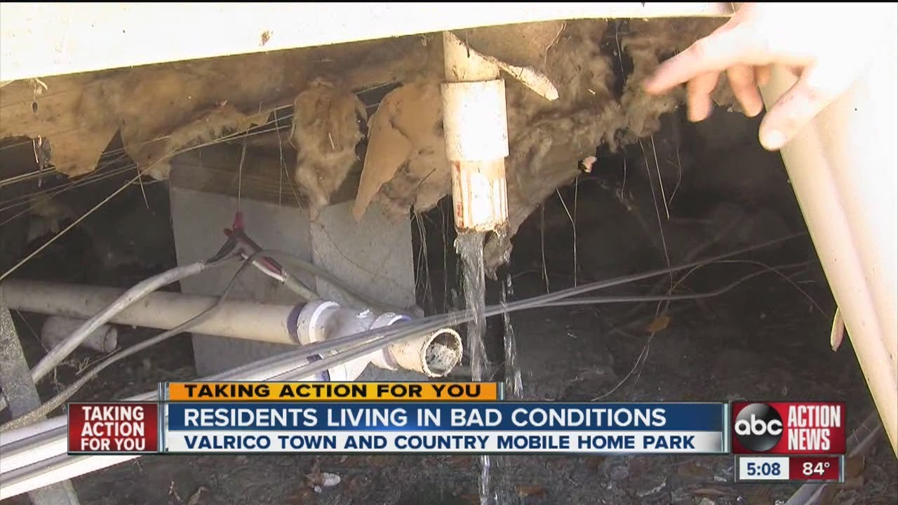 TAFY Raw Sewage At Valrico Mobile Home Park