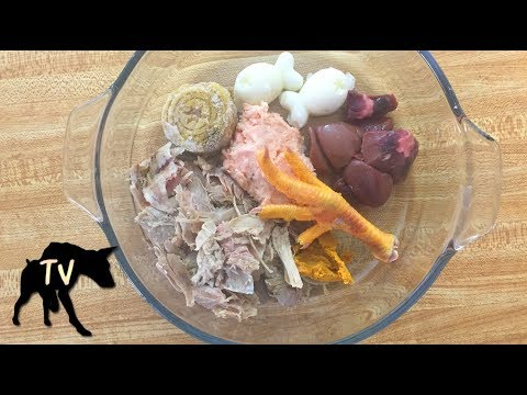 Doberman Eating Raw Meat Diet for Dogs