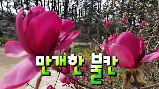 #경나현#스타노래강사#천리포수목원#홀링샵#불칸