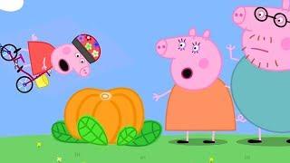 Peppa Pig Italiano | Lezione di bici di Peppa Pig! | Cartoni Animati