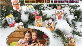 Распаковка сюрприз игрушки щенки SWEET BOX  и  котята Freshtoys!
