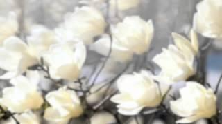 """""""Ah! So Pure"""" for cello and piano-  Adam Liu, cello"""