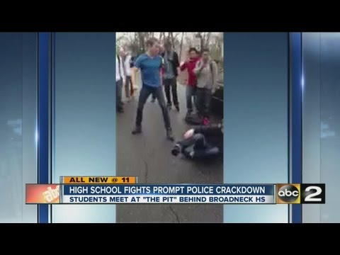 Anne Arundel School Fighting