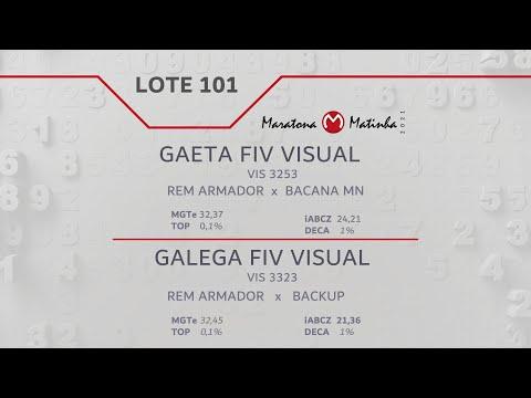 LOTE 101 Maratona Matinha