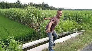 Download Video Preman Ngamuk Nyegat Orang Lewat MP3 3GP MP4