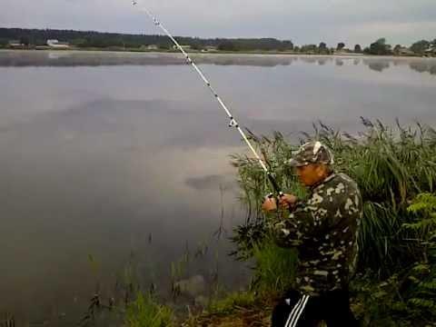 Рыбалка.Ловля карпа на озере. Карп на 5,2кг - YouTube