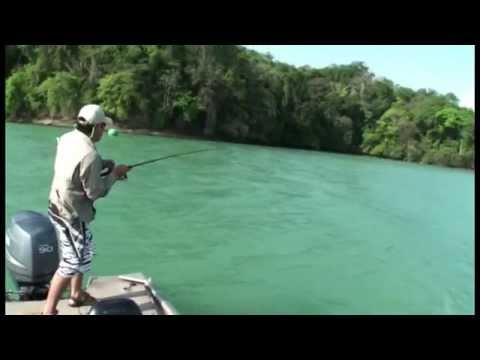FISHING IN PANAMA CANAL 3, SNOOK (Panama Fishing)