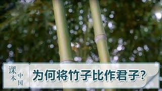 [跟着书本去旅行]古人为什么会把竹子比作君子?| 课本中国