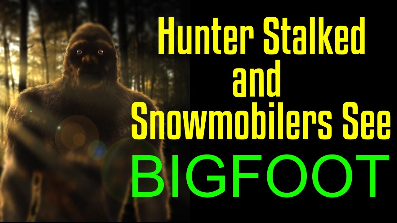 Turkey Hunter is Stalked - An Invisible Bigfoot? - A Snowmobile Sighting of a Sasquatch in Minnesota